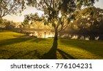 early morning fog sunburst... | Shutterstock . vector #776104231