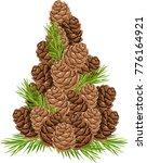 christmas pine cones | Shutterstock .eps vector #776164921