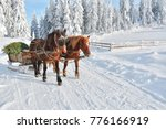 winter in transylvania | Shutterstock . vector #776166919