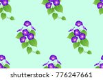 purple morning glory seamless... | Shutterstock .eps vector #776247661