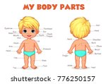 my body parts boy illustration... | Shutterstock .eps vector #776250157