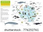 antarctic  antarctica   flora... | Shutterstock .eps vector #776252761