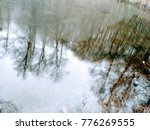 reflection in water  trees are... | Shutterstock . vector #776269555