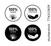 feather and down feather icons  | Shutterstock .eps vector #776315839