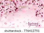 beautiful horizontal banner... | Shutterstock .eps vector #776412751