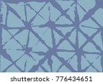 kimono geometric texture ... | Shutterstock .eps vector #776434651