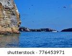 magnificent frigatebirds in... | Shutterstock . vector #776453971