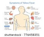 diagram of symptoms of yellow... | Shutterstock .eps vector #776458351