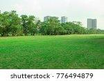 green grass field in the park... | Shutterstock . vector #776494879