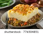 a serving of delicious homemade ... | Shutterstock . vector #776504851