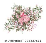 watercolor drawing of twig with ... | Shutterstock . vector #776537611