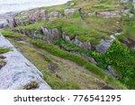 rocky terrain and vegetation on ... | Shutterstock . vector #776541295