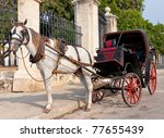 Horse Carriage In Old Havana