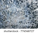 aerial view of snow covered... | Shutterstock . vector #776568727