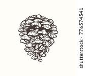 vector illustration a cones | Shutterstock .eps vector #776574541
