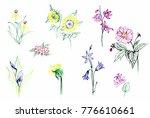 tender delicate ink flowers set ... | Shutterstock . vector #776610661