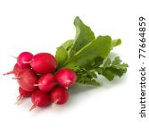 Small Garden Radish Isolated O...