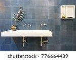 interior of bathroom with sink... | Shutterstock . vector #776664439