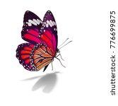 beautiful monarch butterfly...   Shutterstock . vector #776699875