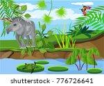 tapir mammal animal standing on ... | Shutterstock .eps vector #776726641