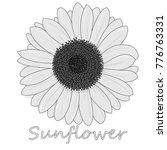 sunflower isolated on white... | Shutterstock .eps vector #776763331