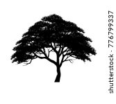 vector of tree  silhouette... | Shutterstock .eps vector #776799337