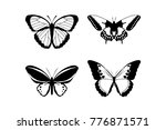butterfly icon on white... | Shutterstock .eps vector #776871571