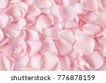 Stock photo roses petals background 776878159