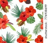 beautiful hibiscus flowers and... | Shutterstock .eps vector #776938699