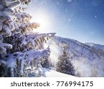 beautiful christmas tree... | Shutterstock . vector #776994175