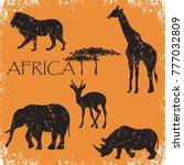 set of animals africa elephant  ... | Shutterstock .eps vector #777032809