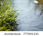 close up of water stream with...   Shutterstock . vector #777041131
