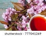 beautiful spring japanese...   Shutterstock . vector #777041269