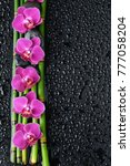 four pink orchid with black... | Shutterstock . vector #777058204