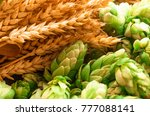 Green Hops  Malt  Ears Of...