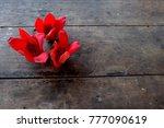 bombax ceiba flowers red flower | Shutterstock . vector #777090619