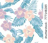 exotic flowers hibiscus... | Shutterstock .eps vector #777148285