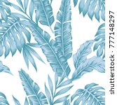 tropical leaves winter color...   Shutterstock .eps vector #777148297