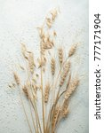 bunch of wheat spikes and oats... | Shutterstock . vector #777171904