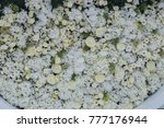 wedding background of white... | Shutterstock . vector #777176944