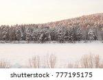 very beautiful light snow...   Shutterstock . vector #777195175