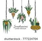 macrame plant hangers in... | Shutterstock .eps vector #777224704