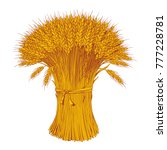 sheaf of wheat engraving ... | Shutterstock .eps vector #777228781