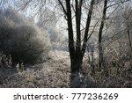 snowy landscape  park in...   Shutterstock . vector #777236269