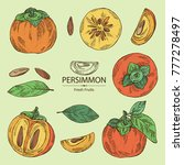 collection of persimmon fruit... | Shutterstock .eps vector #777278497
