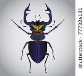 stag beetle  vector illustration   Shutterstock .eps vector #777326131