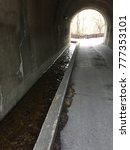 Small photo of Tunnel with a pathway and drainage