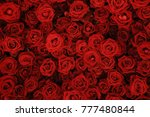 Stock photo flower wall natural red roses background 777480844