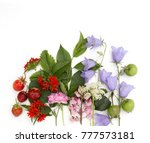 summer colorful flowers with... | Shutterstock . vector #777573181