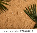 Palm Leaves On Sand Background